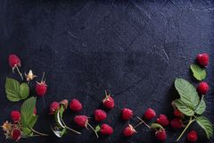 Raspberries on black background. Fresh ripe sweet berries. Selection of healthy food. Slate banner background. View from above, top studio shot, room for text Stock Photos