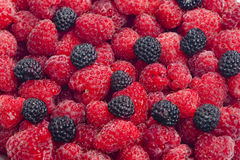 Raspberries and blackberries Royalty Free Stock Photo