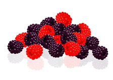 Raspberries and blackberries Stock Images