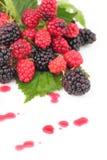 Raspberries and blackberries. Juicy fresh raspberries and blackberries Royalty Free Stock Photos