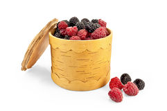 Raspberries and blackberries in Berestovo tueske Stock Image