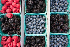 Raspberries blackberries blueberries Royalty Free Stock Photography
