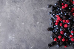 Raspberries, blackberries, blueberries a gray abstract background. Stock Image
