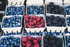 Raspberries, blackberries and blueberries market display Stock Photos
