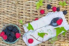 Raspberries and  blackberries in bowls. Stock Image