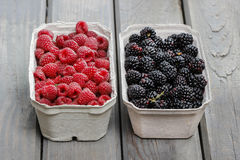 Raspberries and blackberries in carton boxes Royalty Free Stock Photography