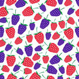 Raspberries and blackberries fruit summer seamless pattern eps10 Stock Photo