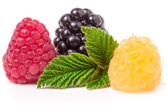 Raspberries and blackberries with leaf isolated on white background Royalty Free Stock Photos