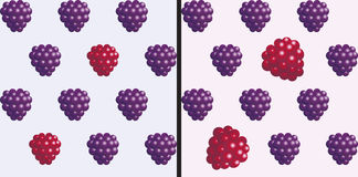 Raspberries and blackberries. Seamless 3D object pattern on light background. Vector illustration Royalty Free Stock Photography