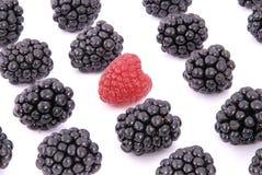 Raspberries and blackberries Royalty Free Stock Image