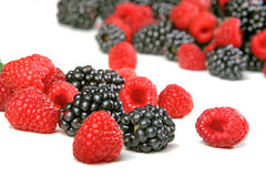Raspberries and blackberries on white background Royalty Free Stock Photo