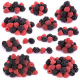 Raspberries and blackberries. On white background Royalty Free Stock Image