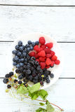 Raspberries and blackberries on a white plate. Food closeup Royalty Free Stock Image