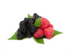 Raspberries and blackberry Royalty Free Stock Photos