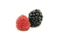 Raspberries and blackberry Stock Photo