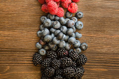 Raspberries and blackberry Stock Images