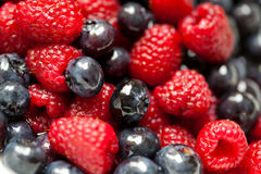Raspberries and blueberries. Fresh raspberries and blueberries covered with rum syrup Stock Photo