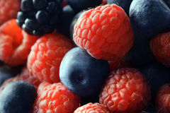 Raspberries & Blueberries Stock Image