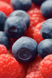 Raspberries & Blueberries Royalty Free Stock Photography