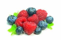 Raspberries and blueberries Stock Image