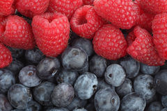 Raspberries and blueberries background. Berries. Raspberries and blueberries background. Berries Stock Image