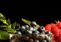 Raspberries, blueberries and blackberres Stock Images