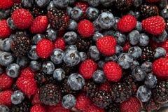 Raspberries, Blueberries and Blackberries Stock Images