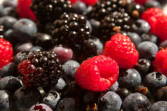 Raspberries, blueberries and blackberries Royalty Free Stock Photo