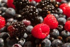 Raspberries, blueberries and blackberries. Mixed raspberries, blueberries and blackberries background Royalty Free Stock Photo