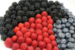 Raspberries Blueberries Blackberries Stock Images