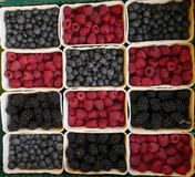 Raspberries-blueberries-blackberries. A scale of different berries for sale at a market stand Royalty Free Stock Photography