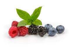 Raspberries, blueberries and blackberries with mint on white background royalty free stock photography
