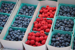 Raspberries and Blueberries. Cartons of raspberries and blueberries for sale at a farmer's market Royalty Free Stock Image