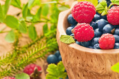 Raspberries and blueberries closeup. Raspberries and blueberries with green leaves macro Royalty Free Stock Photos
