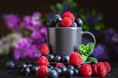 Raspberries and blueberries in a Cup on a dark background. Summer and healthy food concept. Background with copy space stock images