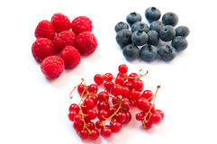 Raspberries blueberries and currants Stock Images