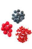 Raspberries blueberries and currants Stock Photo