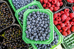 Raspberries, blueberries, currants in baskets sold on local vege. Table market during summer Royalty Free Stock Photo
