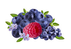 Raspberries  and blueberries, isolated on white. Background Royalty Free Stock Photo