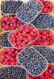 Raspberries and blueberries Stock Photography