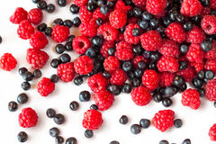 Raspberries and blueberries. A mixture of raspberries and blueberries on white Royalty Free Stock Photos