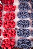 Raspberries and blueberries Stock Photos