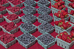 Raspberries Blueberries and Strawberries Royalty Free Stock Photography