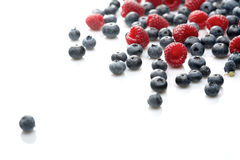 Raspberries and blueberries on white background Royalty Free Stock Image