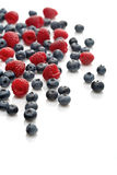 Raspberries and blueberries on white background Stock Photos