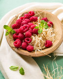 Raspberries in a bowl. With fresh mint Stock Photography