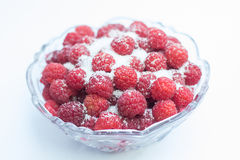 Raspberries in a bowl Stock Photography