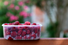 Raspberries. Bowl of raspberries. Selective focus Royalty Free Stock Photo