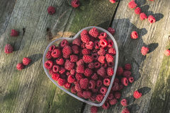 Raspberries in a bowl on wood Stock Images