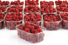 Raspberries in bowls, close-up Stock Photography